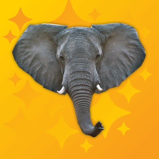 Trumpet Pro - Elephant Sounds