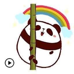 Animated Cute And Chubby Panda