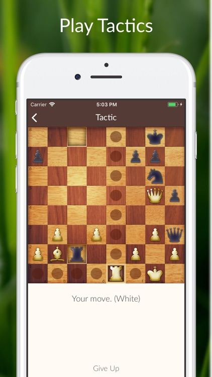 Chess Tactics and Lessons screenshot-0