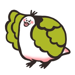 Fresh Cabbage Bird