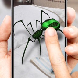 3D spider on a hand simulator