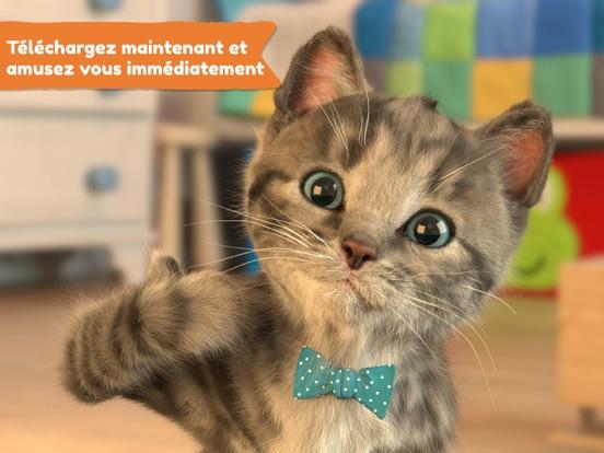 Petit Chaton Mon Chat Préféré