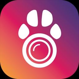 PetCamApp - Pet Camera