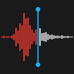 Notas de Voz