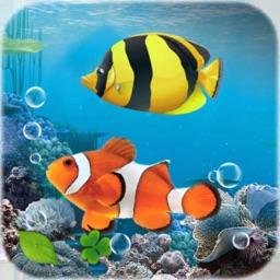 Live Fish Aquarium HD