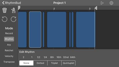 RhythmBud - AUv3 MIDI FX screenshot 3