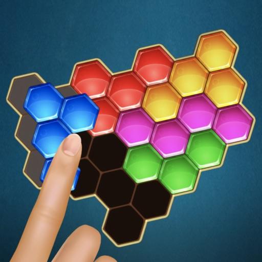 Hexa Mystery Puzzle Block