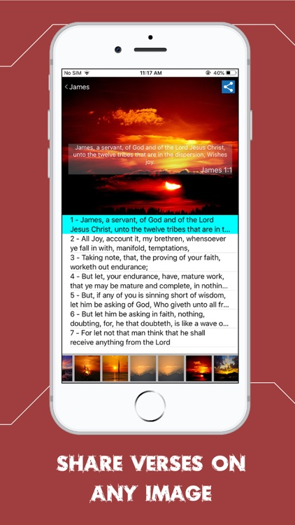 Rotherham Emphasized Bible screenshot-5