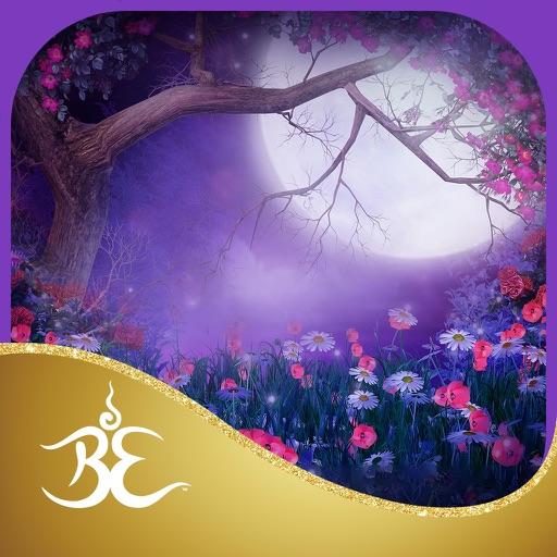 Mindful Magic Meditations