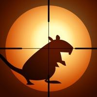 Codes for Rat Hunter Hack