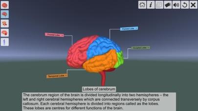 AR Human brain screenshot 6