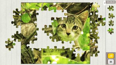Jigsaw Puzzle Spiele Epic
