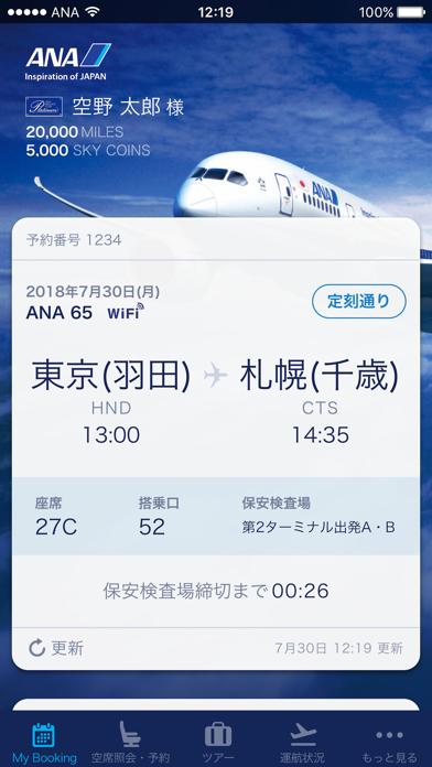 ANA ScreenShot1