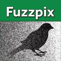 Codes for Fuzzpix Hack
