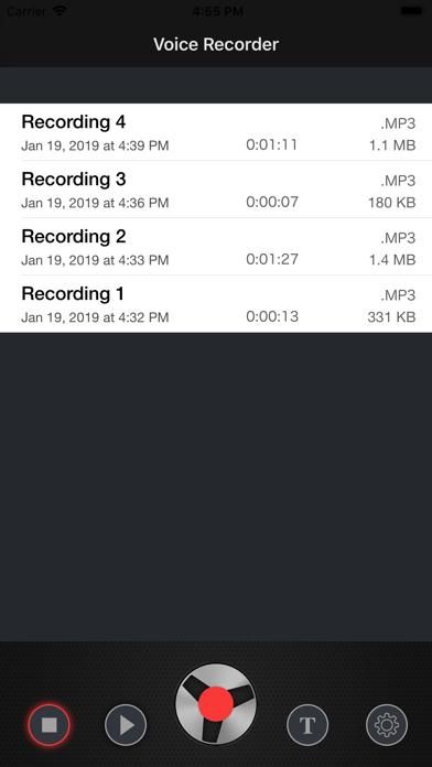 Voice Recorder - Audio REC på PC
