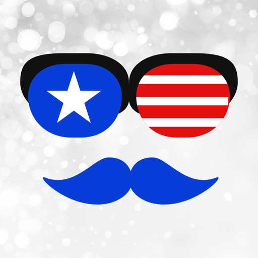 USA Independence Day Sticker