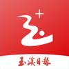 Yuxi New Media Development Co. Ltd. - 玉溪+  artwork
