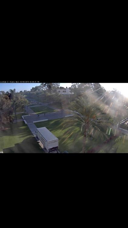 Lion Cams screenshot-3
