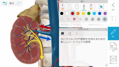 ヒューマン・アナトミー・アトラス2020 screenshot1