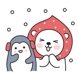 Happy bear winter special