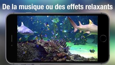 Screenshot #3 pour Aquarium Live HD +
