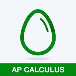AP Calculus Practice Test Prep