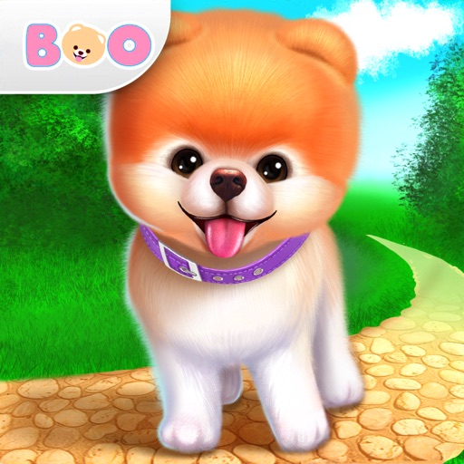 Бу – Самая милая собачка
