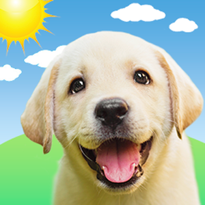 Weather Puppy: Forecast + Dogs Weather app