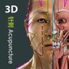 Visual Acupuncture 3D - GraphicVizion
