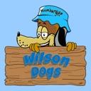 Wilson Dogs