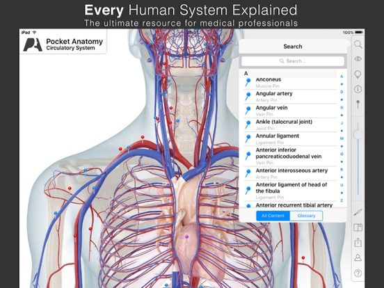 Screenshot #5 pour Pocket Anatomy.