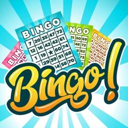 Bingo Classic Multi