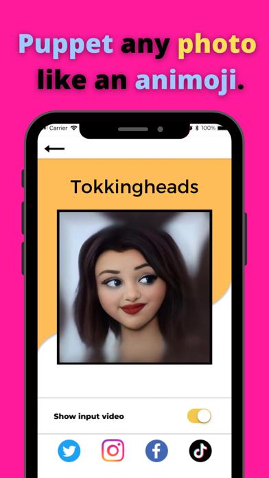 TokkingHeads: Portrait Video screenshot 3