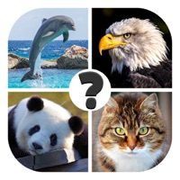 Codes for Animals quiz: guess the animal Hack