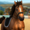 Horse World - Saut d'obstacles
