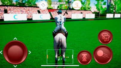 Screenshot for Polo Game in Poland App Store