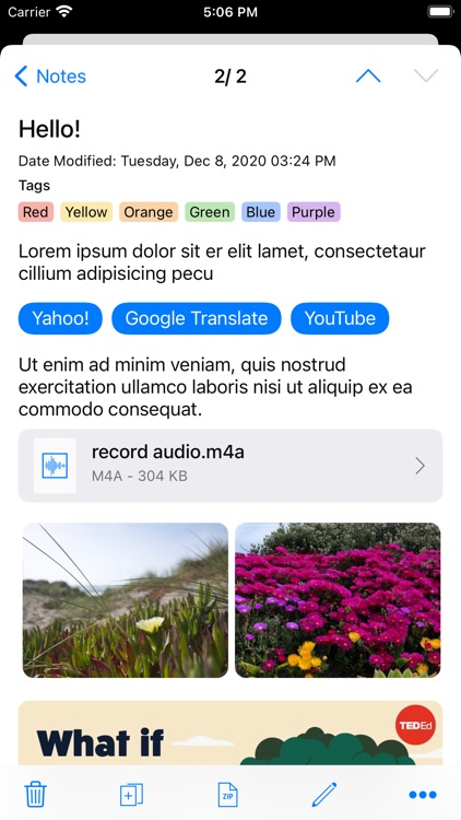 RedApp Web Browser screenshot-7
