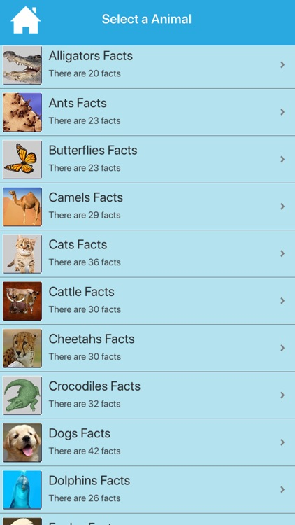 Cool & Amazing Animal Facts