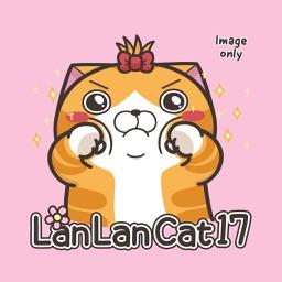 Lan Lan Cat 17 (Image)