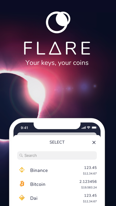 Flare Wallet