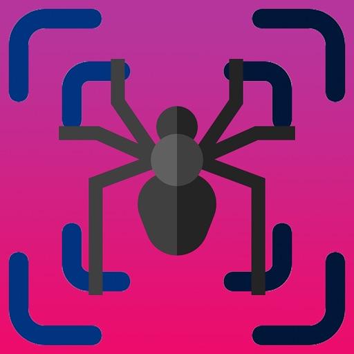 Spider Scanner