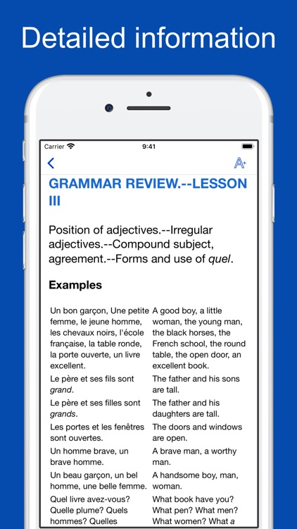 French Grammar and Vocabulary screenshot-3