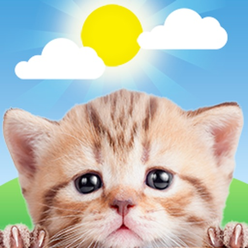 Weather Kitty: Weather + Radar