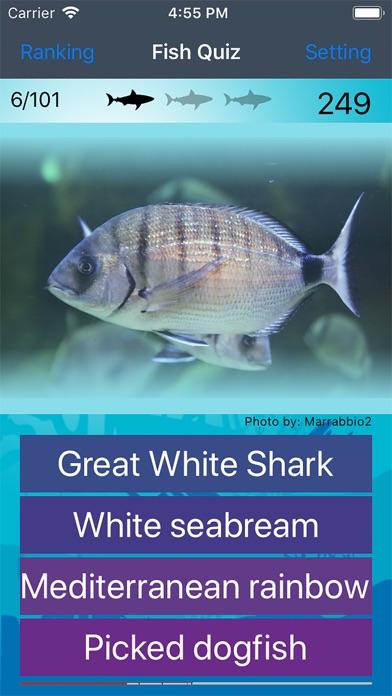 Fish Quiz 2019 app image