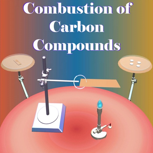Combustion of Carbon Compounds