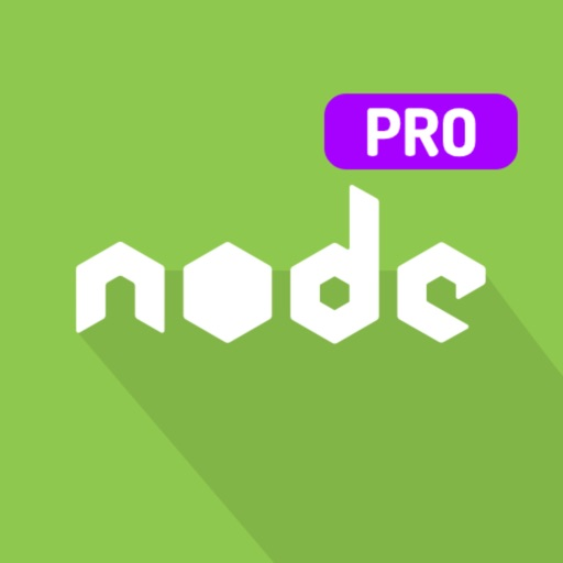Learn Node.js Programming PRO