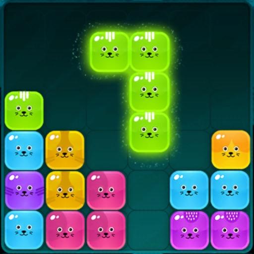 Kitty Block Puzzle