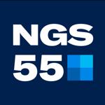 НГС55 на пк