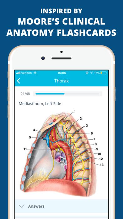 USMLE Clinical Anatomy Quiz Screenshot