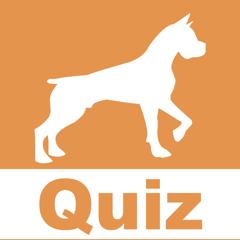 Das Hunde Quiz HD